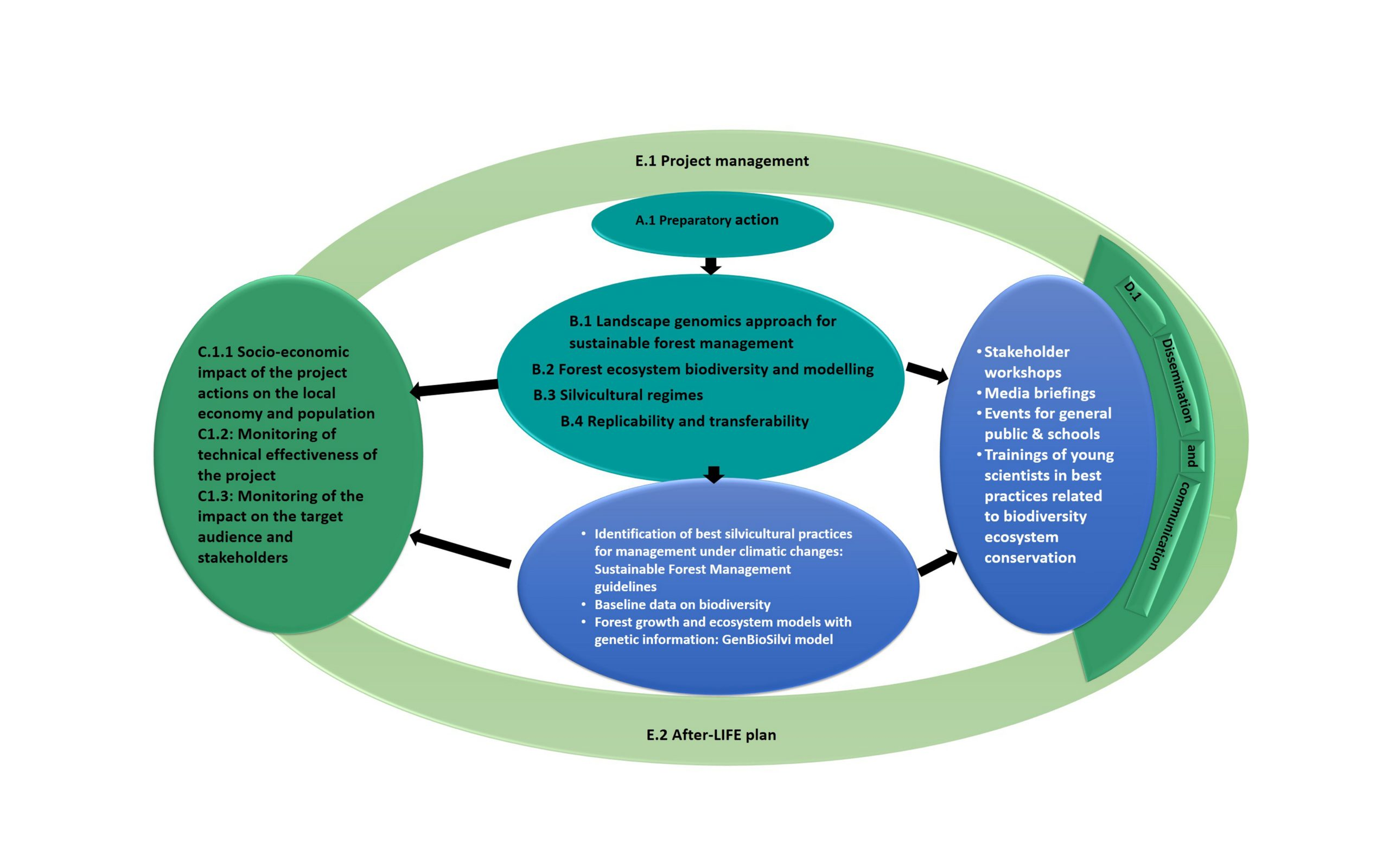 LIFE SySTEMiC actions and main outputs